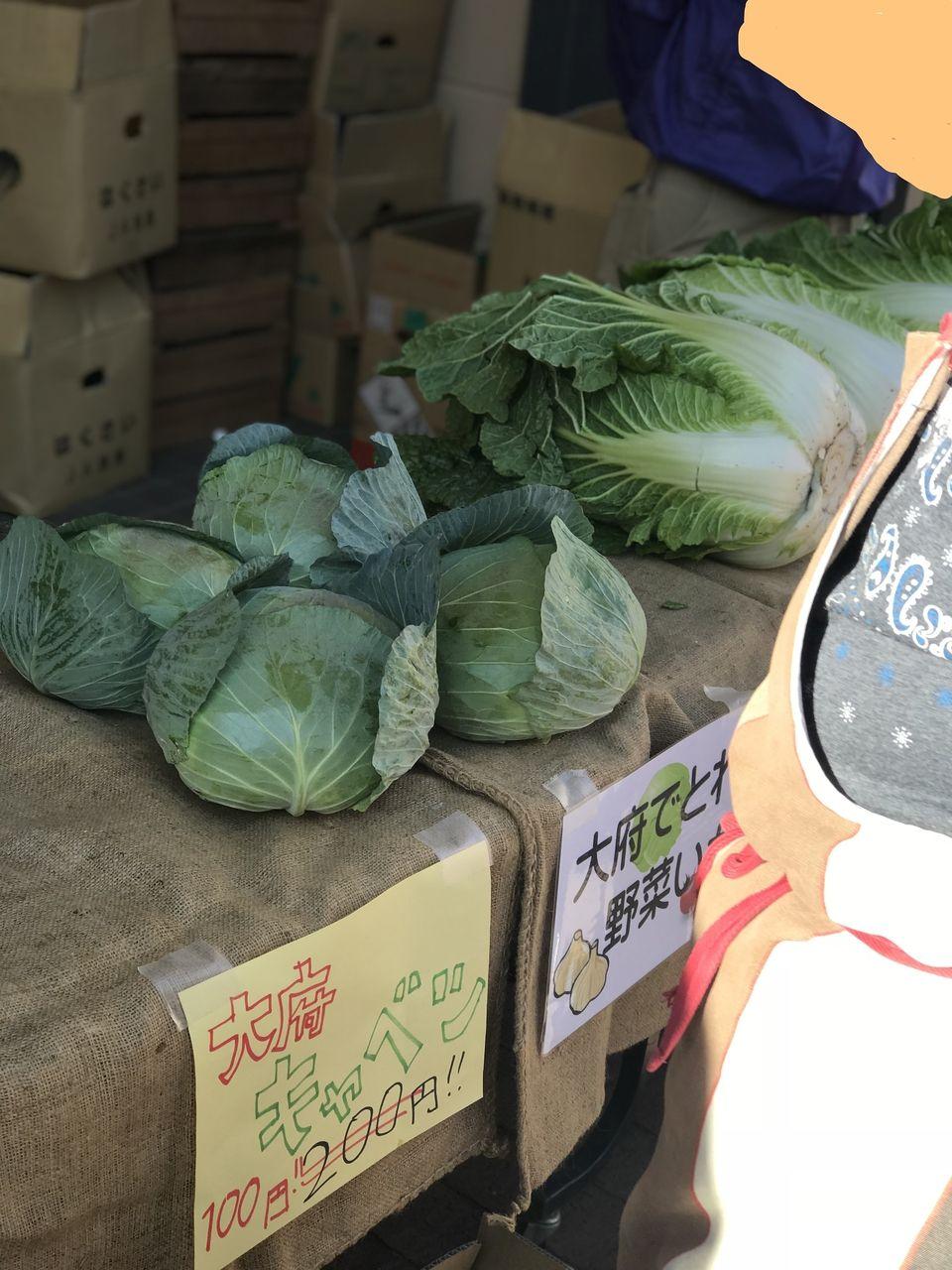 愛知県はキャベツの生産で、群馬県と1,2位を争っている。