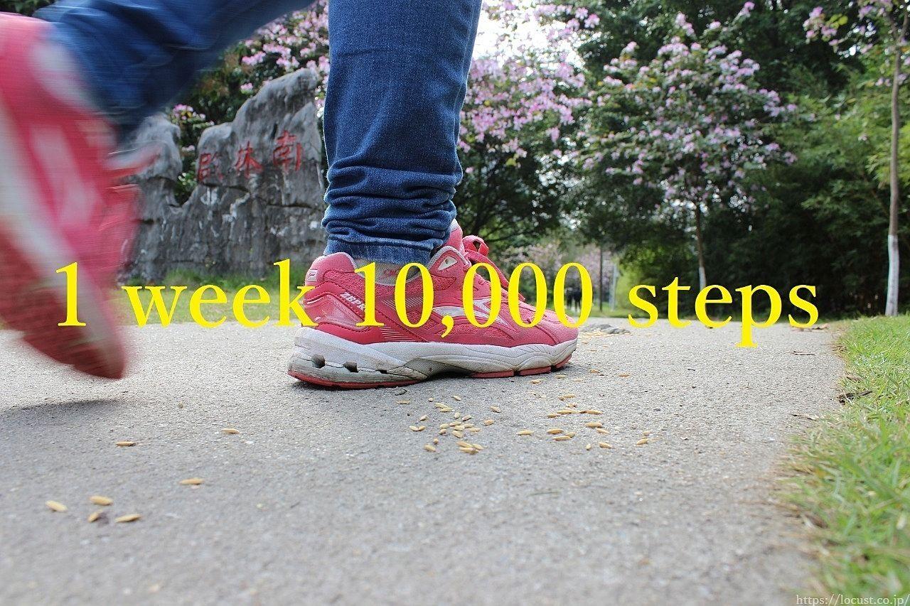 今週は1日最低10,000歩!!【2月11~17日】